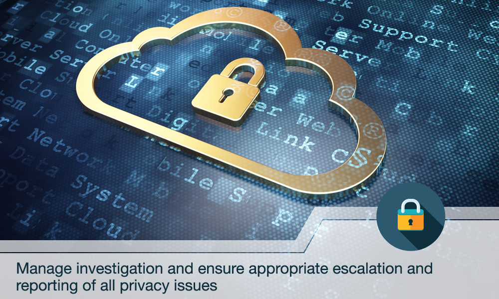 Manage investigation and ensure appropriate escalation and reporting of all privacy issues