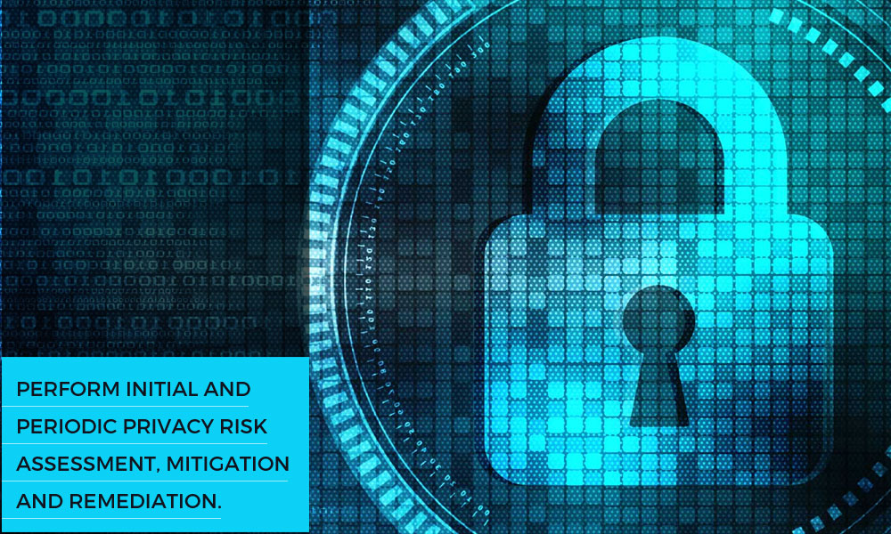 Perform initial and periodic privacy risk assessment