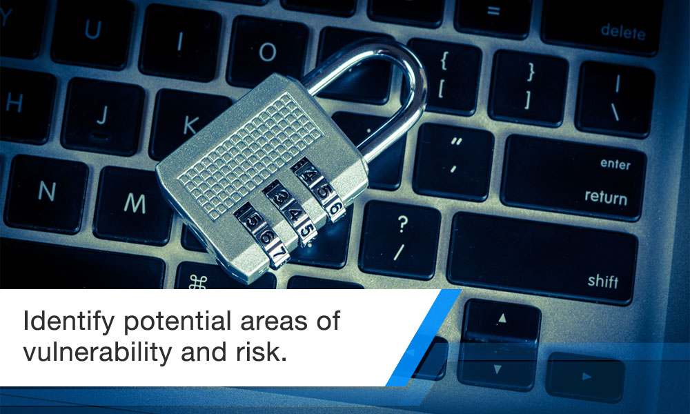 Identify potential areas of vulnerability and risk
