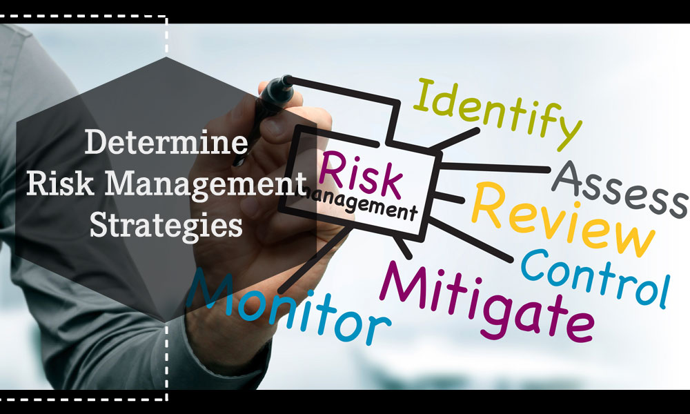 Determine Risk Management Strategies