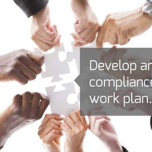 Develop annual compliance work plan