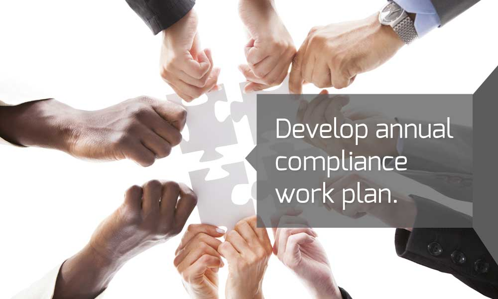 Develop annual compliance work plan